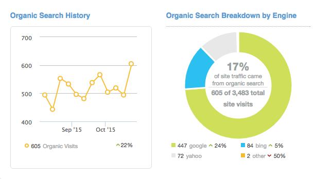 Moz Analytics Report