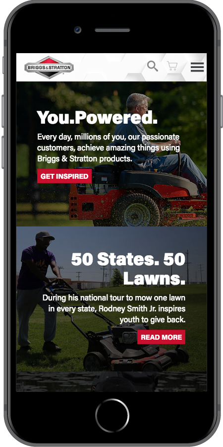 Briggs and Stratton You Powered Mobile2